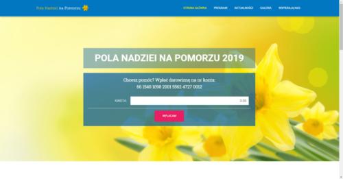 Strona internetowa, pozycjonowanie